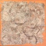 Snake Skin: Polymer paint on canvas 60x60cm